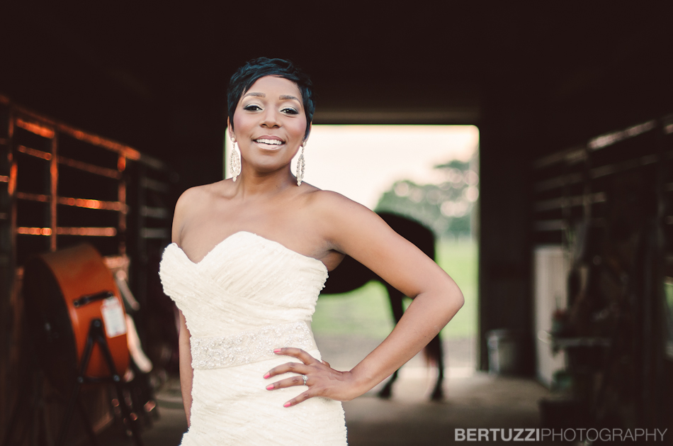 Bridal Portraits Houston